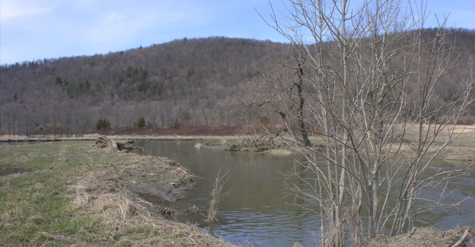 Ten Mile River in early spring