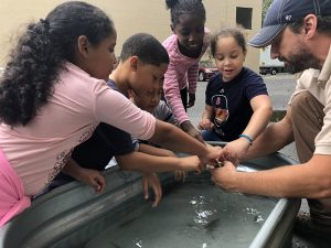 Danbury students fully immersed in nature for annual Still River Day