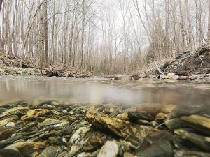 GE pays last installment for natural resources restoration along Housatonic River