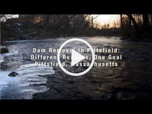 Division of Ecologial Restoration Releases New Dam Removal Video