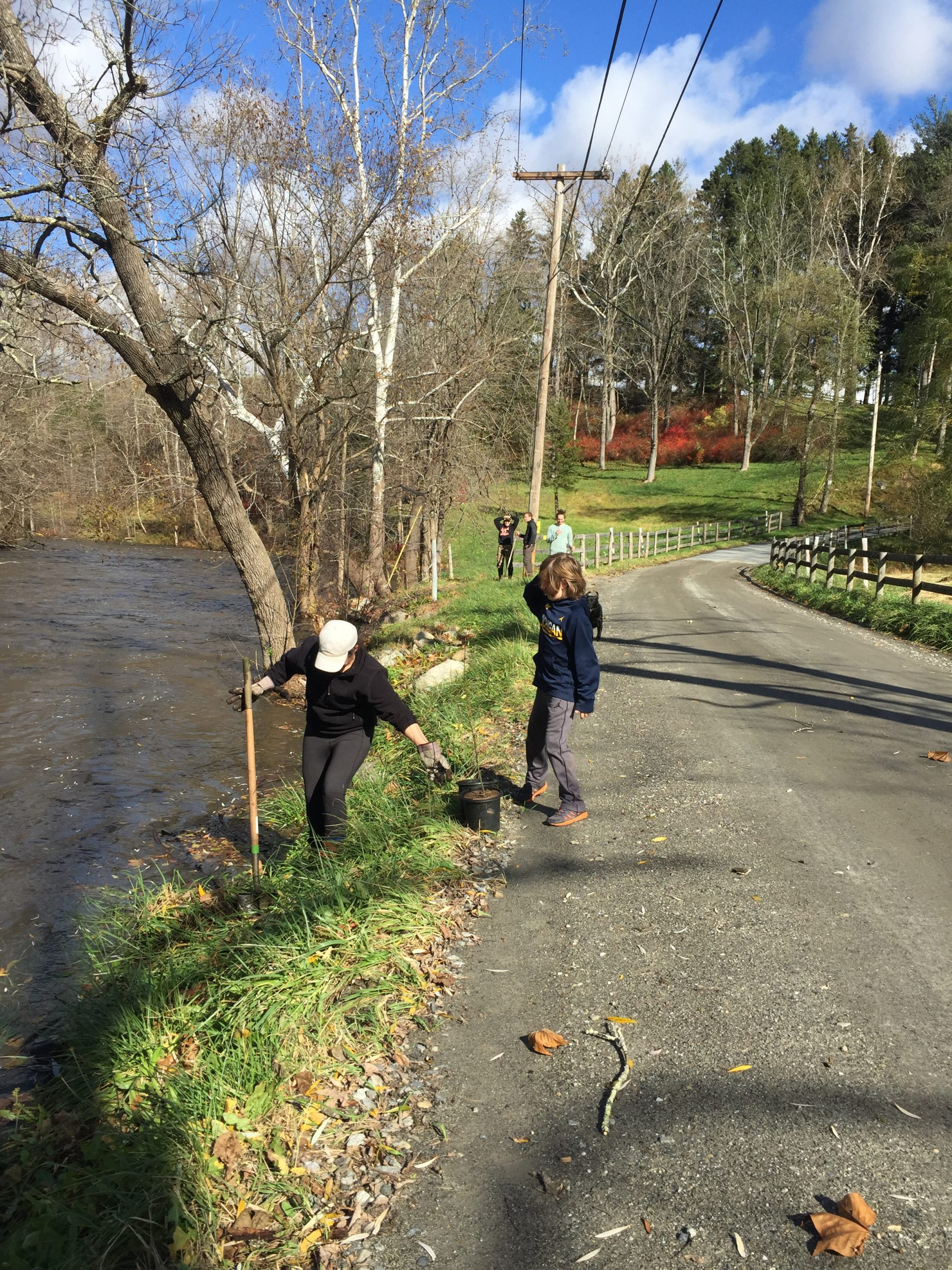 Volunteer planting day on the Ten Mile River.
